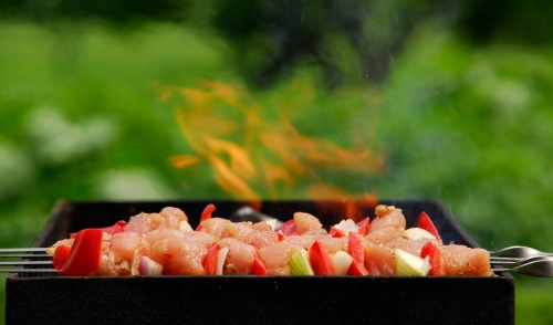 The Differences between Charcoal and Gas Grills