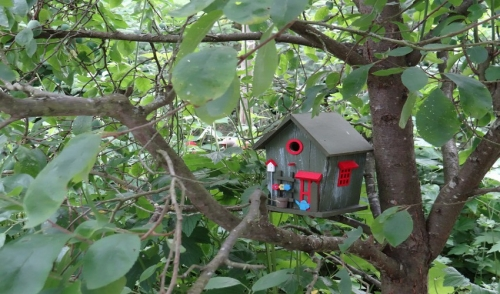 Backyard Bird Shelters