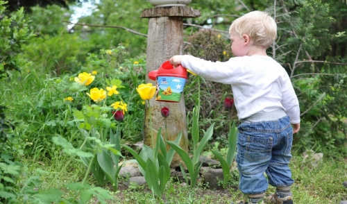 Garden Ideas to Keep Kids Busy
