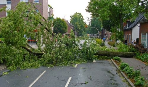 Home Preparation Tips for Summer Storms
