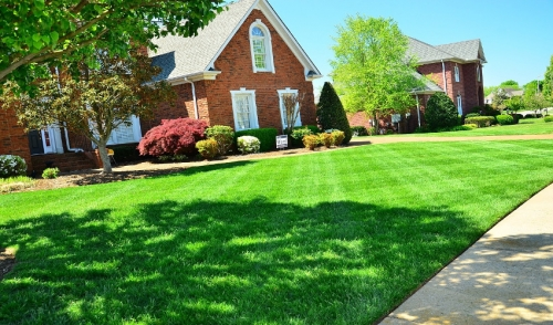 When You Should Aerate Your Lawn