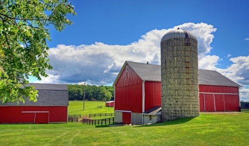 Looking To Build? Exploring Tthe Benefits of Pole Barns