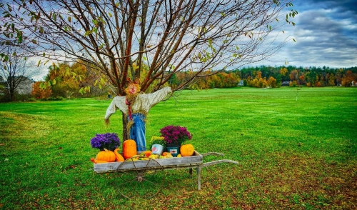 Outdoor Style For Fall Decor