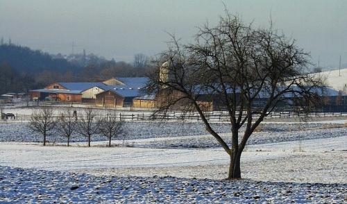 Farming Through the Winter Freeze