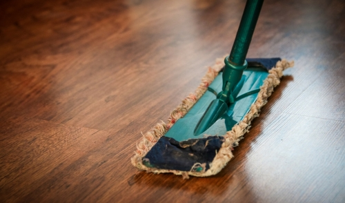 Cheap Green Cleaning for Your Pets