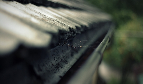Effective Ways To Clean Your Gutter