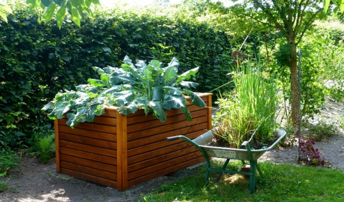 Build Your Own Raised Garden Bed