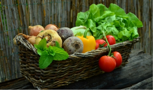 Tips On How to Grow Your Favorite Vegetables
