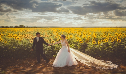 Rent the Equipment you need for your Backyard Wedding