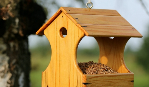How to Clean Your Bird Feeders