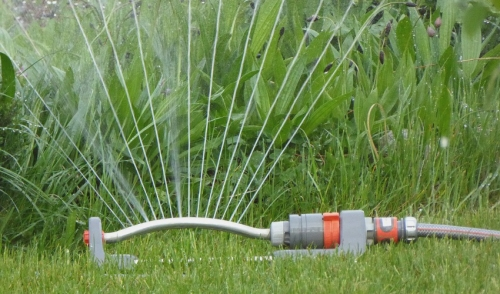 Being Efficient While Watering Your Lawn