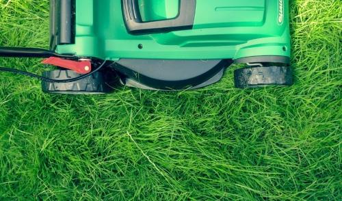 Choosing The Right Push Lawnmower