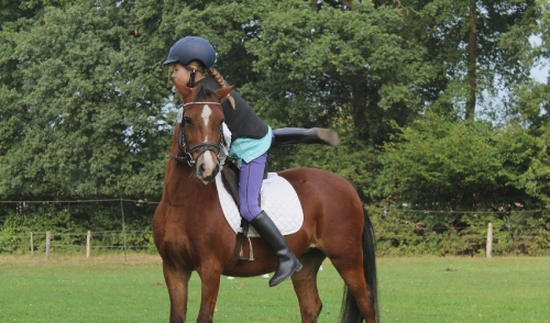 Dismounting a horse