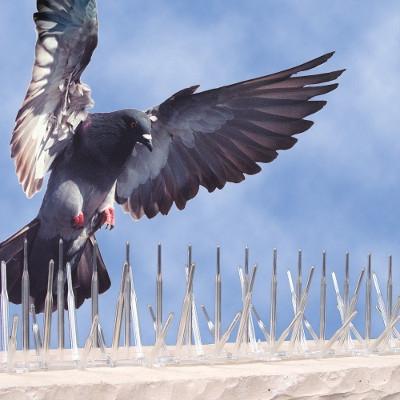 Bird B Gone Bird Spikes