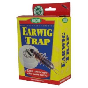 SpringStar Earwig Trap