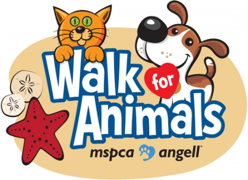 The MSPCA-Cape Cod Walk for Animals