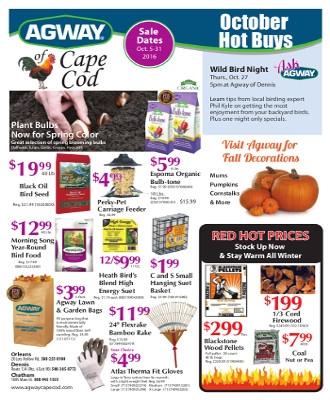 October Hot Buys