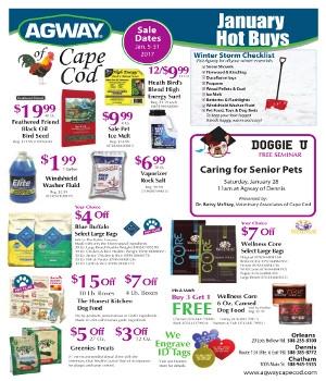 January Hot Buys