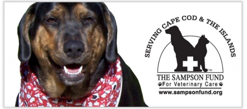 The Sampson Fund: Plants for Pets Plant Sale & Garden Event