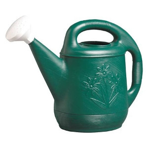 Novelty 2 Gallon Watering Can $5.99