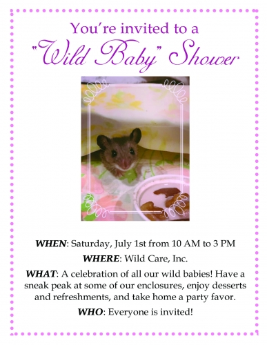 You're Invited to a Wild Baby Shower!