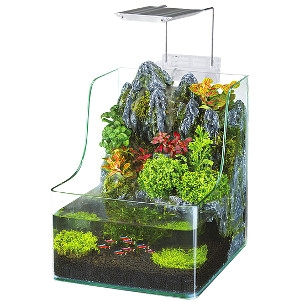 20% Off The AquaTerrium™ Planting Tank