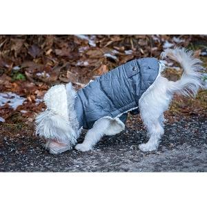 $5 Off Dog Coats