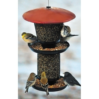 25% Off Any Bird Feeder