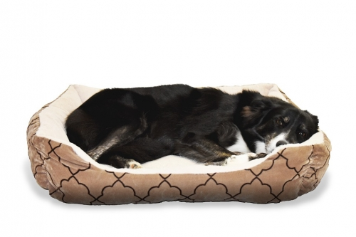$10 Off Pet Beds Over $24.99