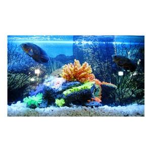 25% Off Any Aquarium Decoration