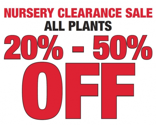 Nursery Clearance Sale