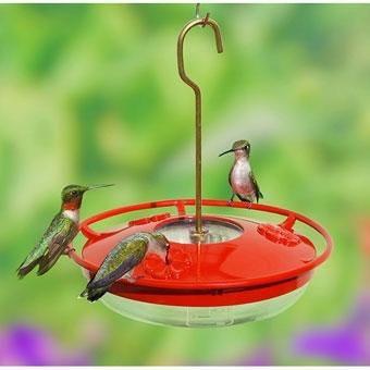 18% Off Hummingbird Feeders