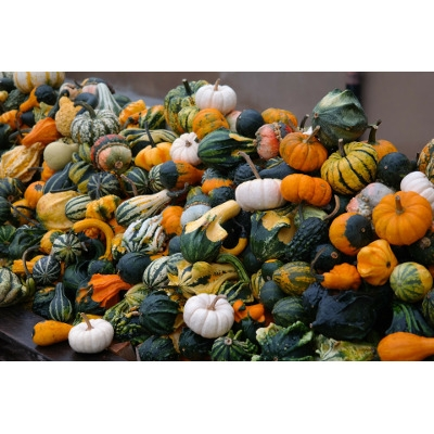 Cool Gourds