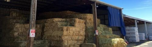We have Hay!