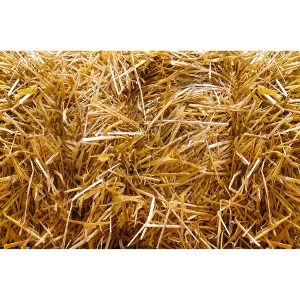 Standard Size Bale of Straw Now $9.99