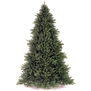 $10 Off Premium Christmas Trees