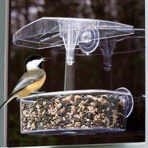Observer Window Feeder Only $12.99