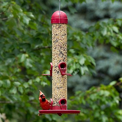 Perky Pet Garden Song Wild Bird Feeder on Sale