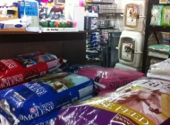 Equine Feed & Supplies
