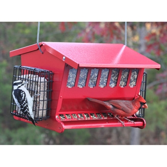 Large Double Sided Bird Feeder Only $29.99