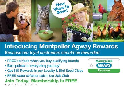 Rewards Club Ad