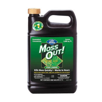 MOSS OUT!® For Lawns Liquid