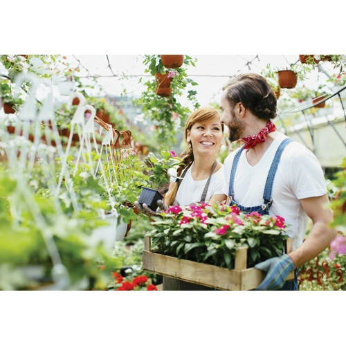 Garden Center & Retail Services
