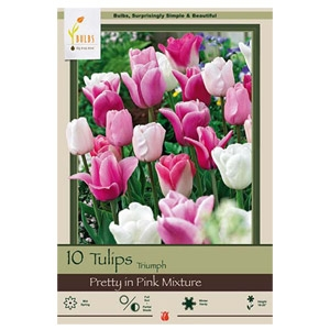 'Pretty in Pink' 20-pack Tulip Bulbs