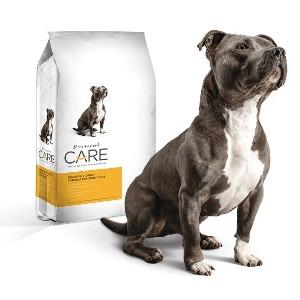 Diamond Care Sensitive Stomach Dog Food