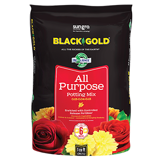 $3 mail-in rebate for $10+ Black Gold Potting Soil