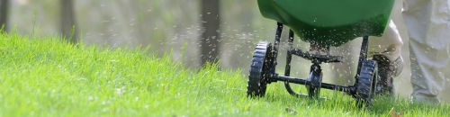 Reseed Your Lawn!