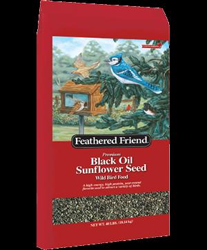 Feathered Friend Black Oil Bird Seed