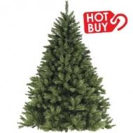 Fresh Cut Balsam Fir Christmas Tree 6-8' $33.99