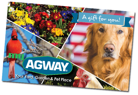 Agway Gift Cards